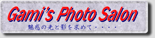 Gami's Photo Salon 動画置場